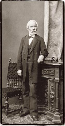 Arany János, Ellinger Ede felvétele, 1880