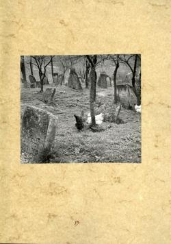 Erdélyi Lajos fotója
