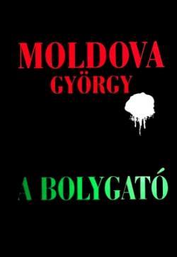 A bolygató (2014)