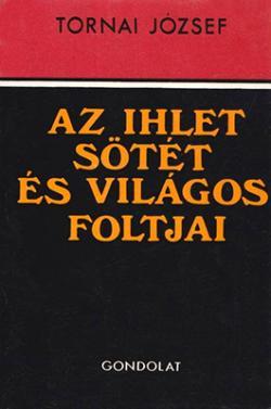 Az ihlet sötét és világos foltjai (1982)