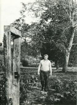 Bertók László vései családi ház kertjében (1985)