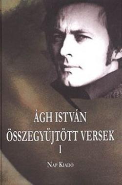 Összegyűjtött versek I. (2013)