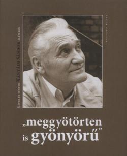 """""""meggyötörten is gyönyörű"""" (2009)"""
