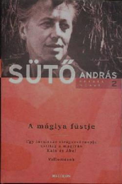 A máglya füstje (2008)