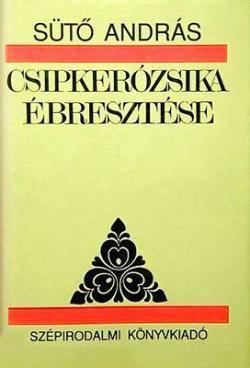 Csipkerózsika ébresztése (1993)