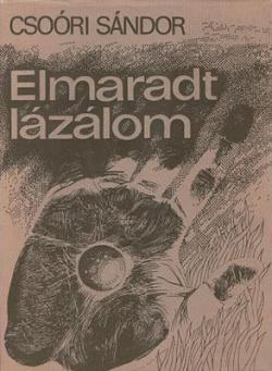 Elmaradt lázálom (1982)