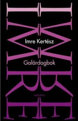 Galärdagbok (2002)