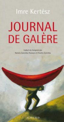 Journal de galère (2010)