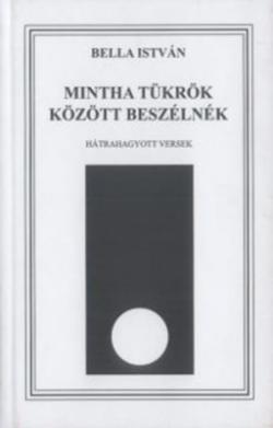 Mintha tükrök között beszélnék (2008)