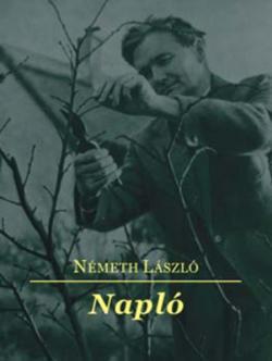 Napló (2006)