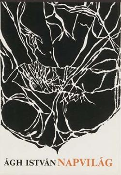 Napvilág (1981)