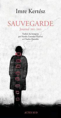 Sauvegarde. Journal 2001-2003 (2012)