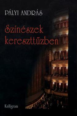 Színészek kereszttűzben (2011)