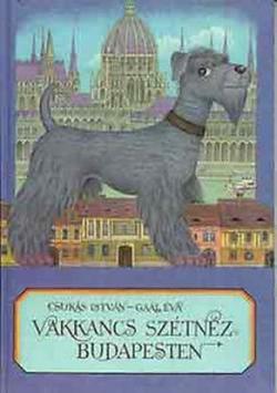 Vakkancs szétnéz Budapesten (1989)