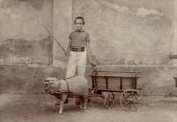 Füst Milán (1900)
