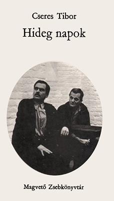 Hideg napok (1973)