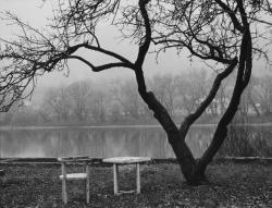 Kert a Duna partján (1970)