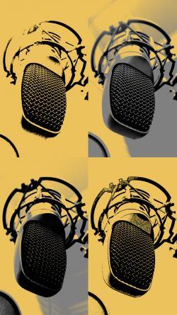 01. Professzionálisan felszerelt stúdiónkban professzionális mikrofonok segítségével rögzítjük a hangot