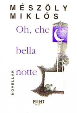 Oh, che bella notte (1996)