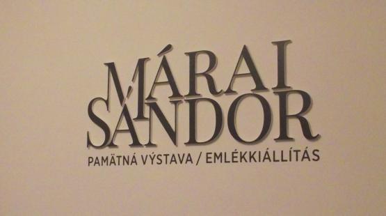 Új kiállítás Kassán a Mészáros utcában